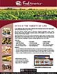 ABC Food America Product Information